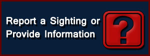 Report a Missing Person Sighting or Provide Information